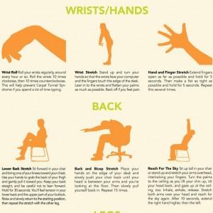 Étirements poignets/mains et dos