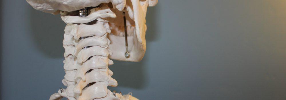 Les techniques d'ajustements chiropratiques